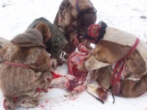 esdm-cursos-supervivencia-escuela-deportiva-madrid-nieve (2)